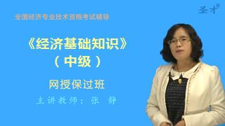 2018年经济师《经济基础知识(中级)》网授保过班