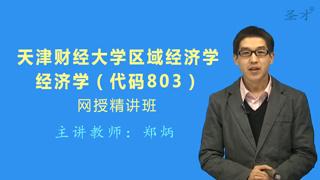 2018年天津财经大学区域经济学803经济学网授精讲班(教材精讲+考研真题串讲)