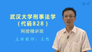 2019年武汉大学法学院828刑事法学网授精讲班【教材精讲+考研真题串讲】