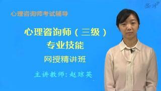 心理咨询师(三级)专业能力网授精讲班【教材精讲+真题串讲】