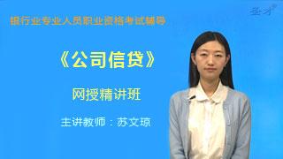 2019年下半年银行业专业人员职业资格考试《公司信贷(初级)》网授精讲班【教材精讲+真题串讲】