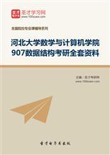 2019年河北大学数学与计算机学院907数据结构考研全套资料