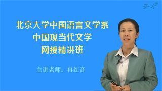 2021年北京大学中国语言文学系《中国现当代文学》网授精讲班【教材精讲+考研真题串讲】