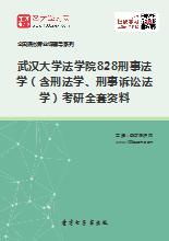 2019年武汉大学法学院828刑事法学(含刑法学、刑事诉讼法学)考研全套资料