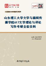 2020年山东理工大学文学与新闻传播学院617文学理论与评论写作考研全套资料