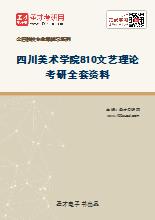 2020年四川美术学院810文艺理论考研全套资料