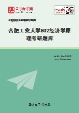 2021年合肥工业大学802经济学原理考研题库